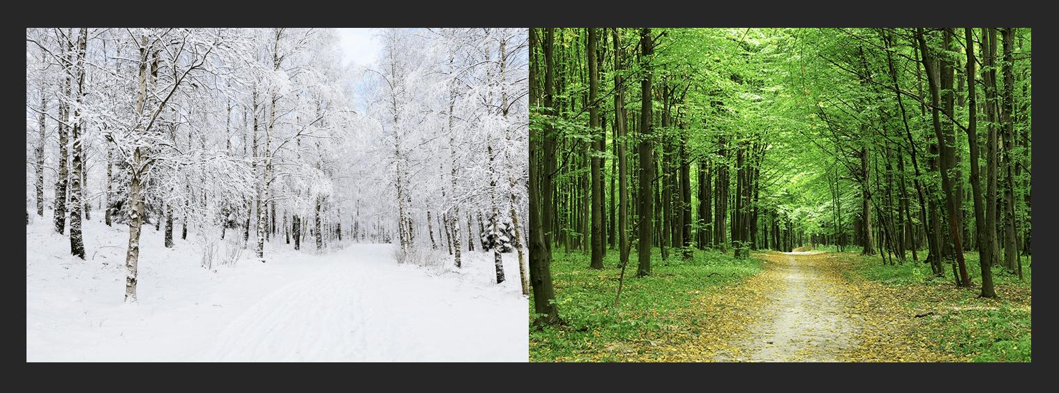 Соединение двух фотографий в одну в Фотошопе