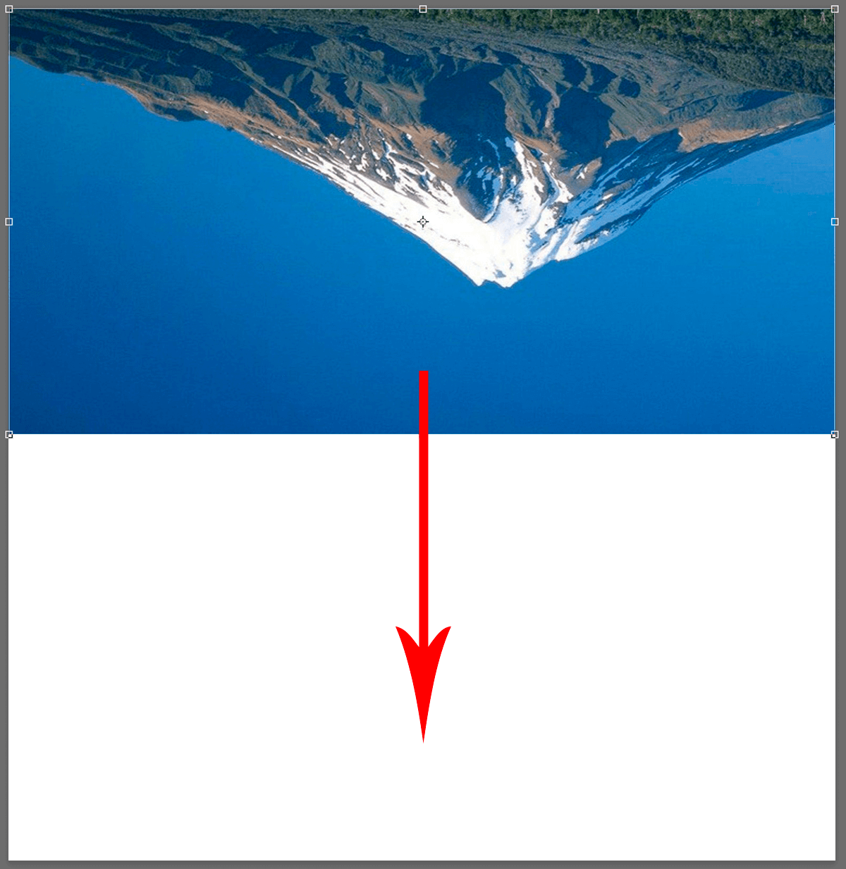 Перемещение выделенного изображения в Photoshop