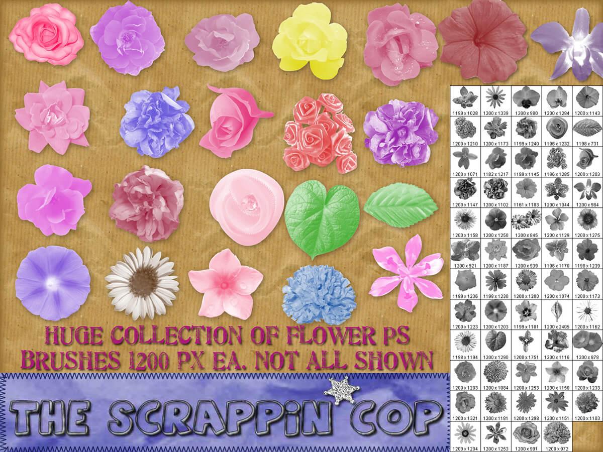 Кисти с разными цветами для Фотошопа