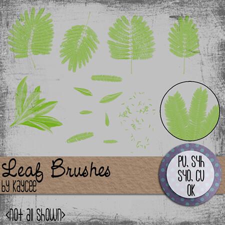 Кисти с листьями трав, кустарников и деревьев для Фотошопа