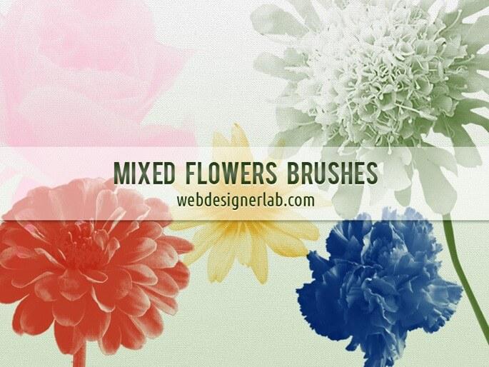 Кисти с бутонами цветов для Фотошопа