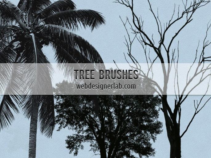 Кисти для рисования деревьев в Фотошопе