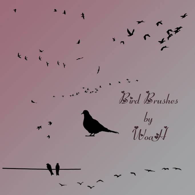 Кисти для рисования птиц в Фотошопе