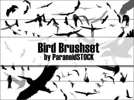Кисти с различными летящими птицами для Фотошопа