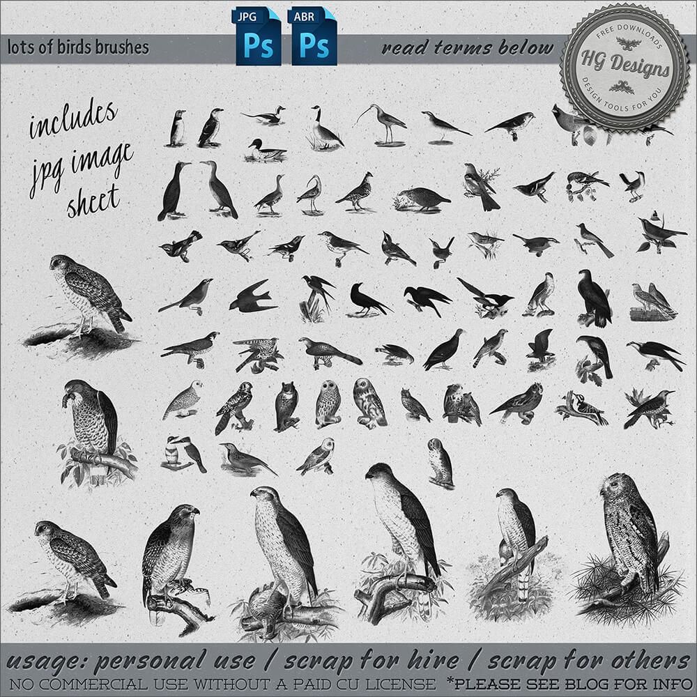 Кисти для рисования разных птиц в Фотошопе