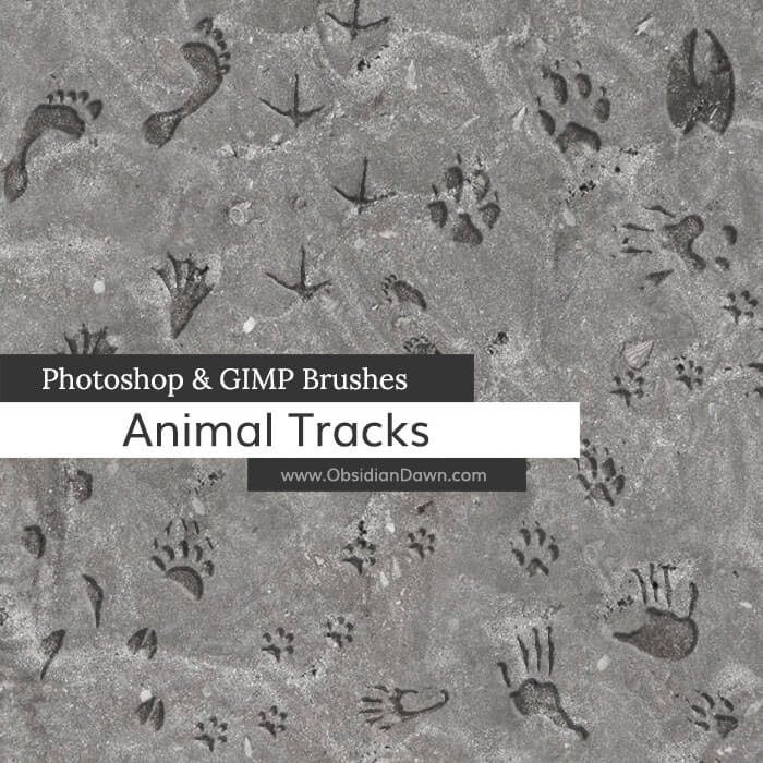 Кисти со следами животных и человека для Фотошопа