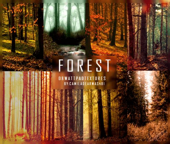 Красочные фоны с лесными пейзажами для Фотошопа