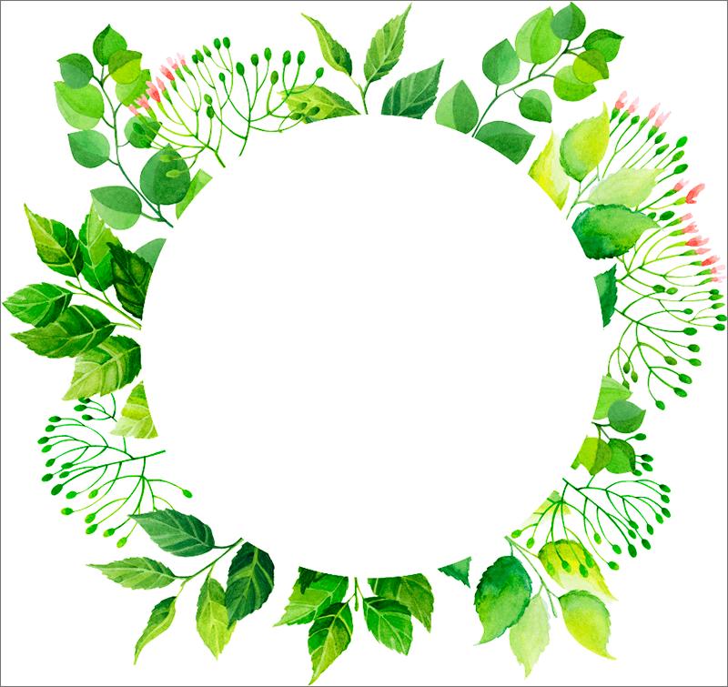 Круглая рамка из зеленых листьев для Фотошопа
