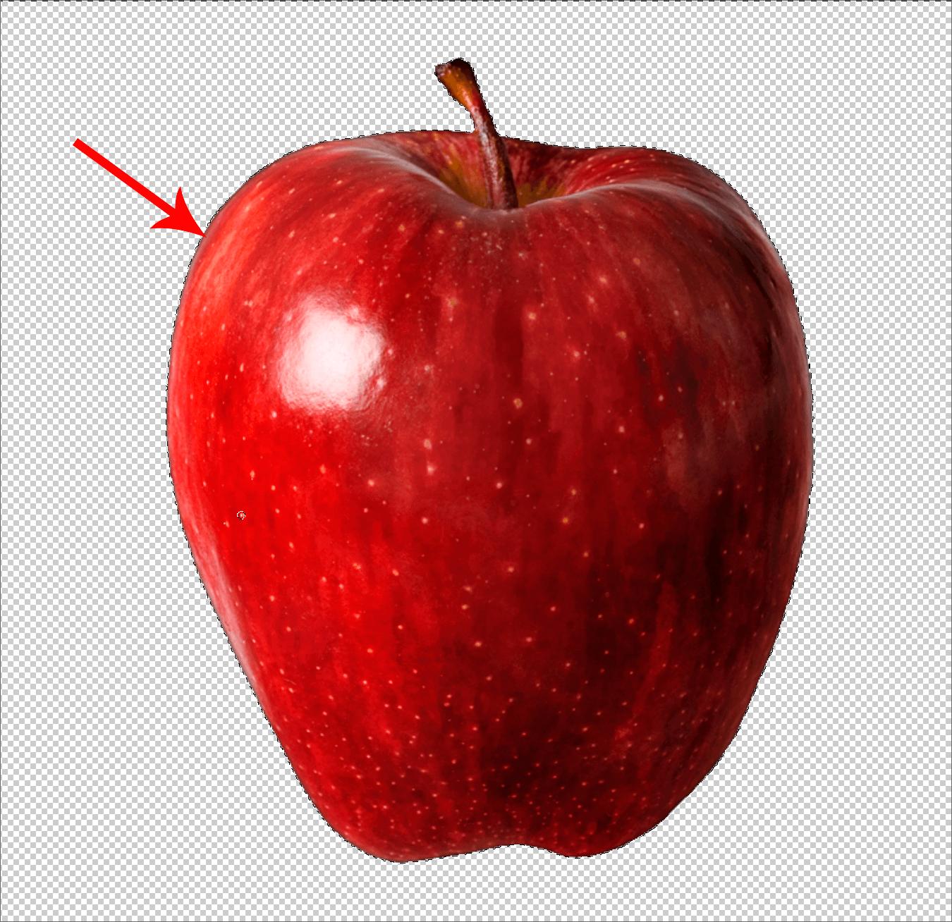 Результат обработки кистью контуров объекта в Фотошопе